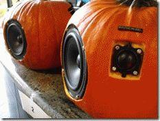 Mackie Pumpkin